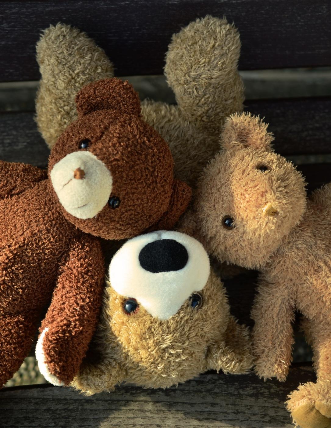teddy-1183248