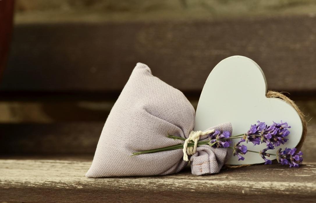lavender-823600